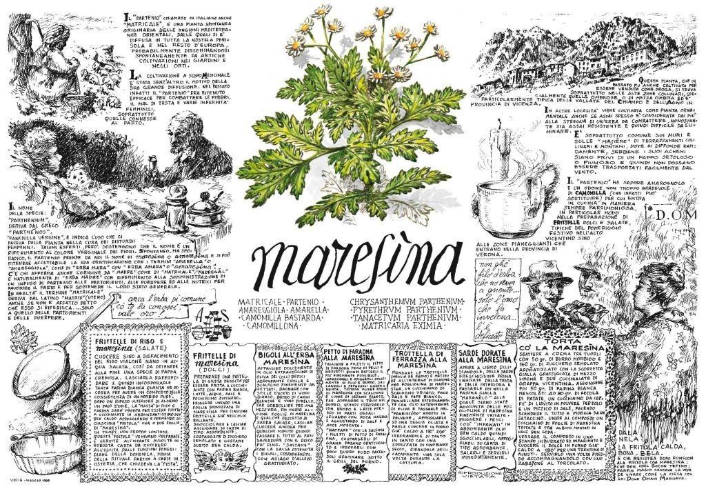 litografia_maresina