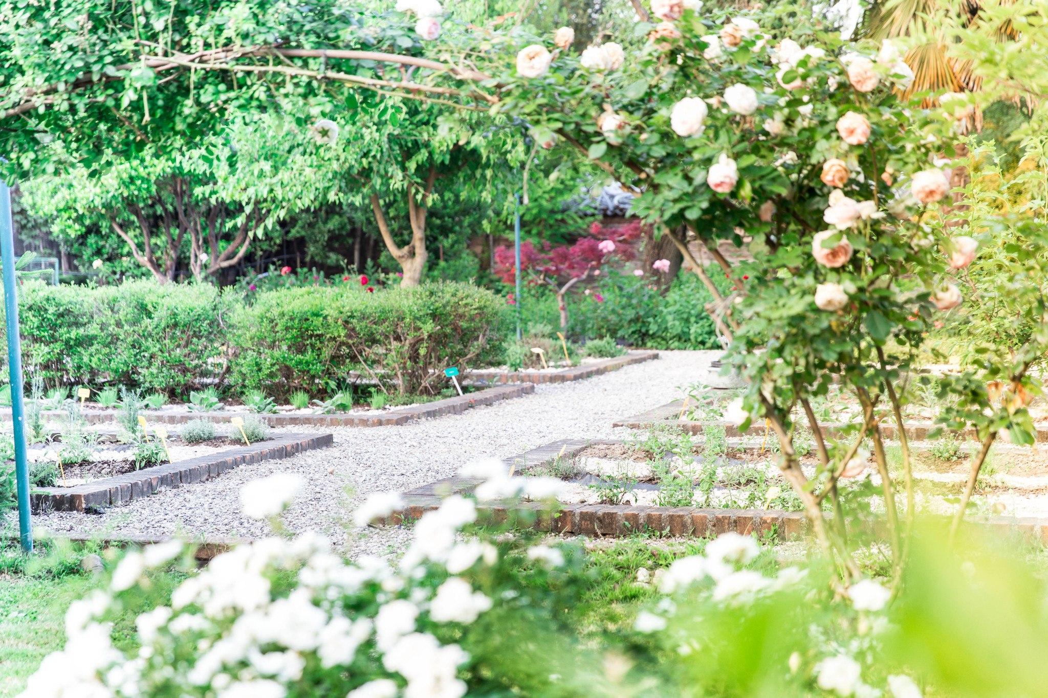 giardino_officinale55